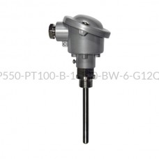 Głowicowy czujnik temperatury PT100 - AS1-CTP550-PT100-B-1-100-BW-6-G1/2''-A-2
