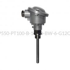Głowicowy czujnik temperatury PT100 - AS1-CTP550-PT100-B-1-100-BW-6-G1/2''-A-4