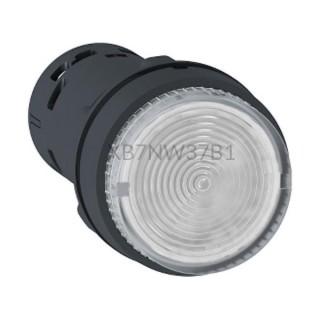 Przycisk z podświetleniem biały NO 24 V AC/DC XB7NW37B1 Schneider Electric